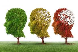 alzheimer's and care management
